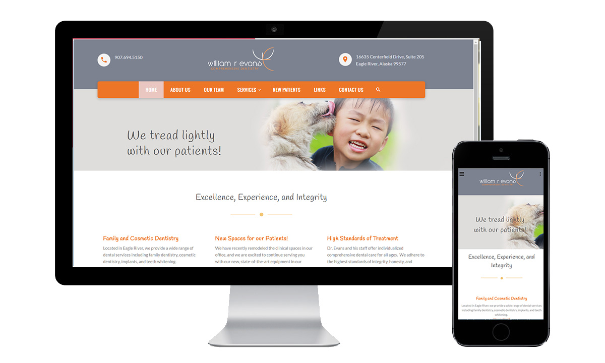 dental web design eagle river